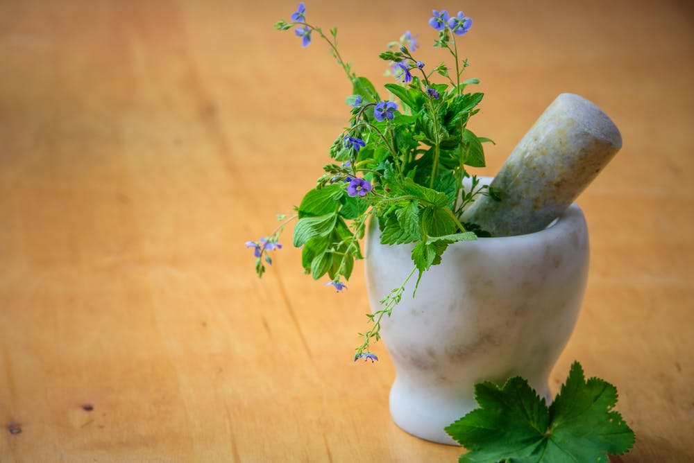 Herbal medicine to support the immune system